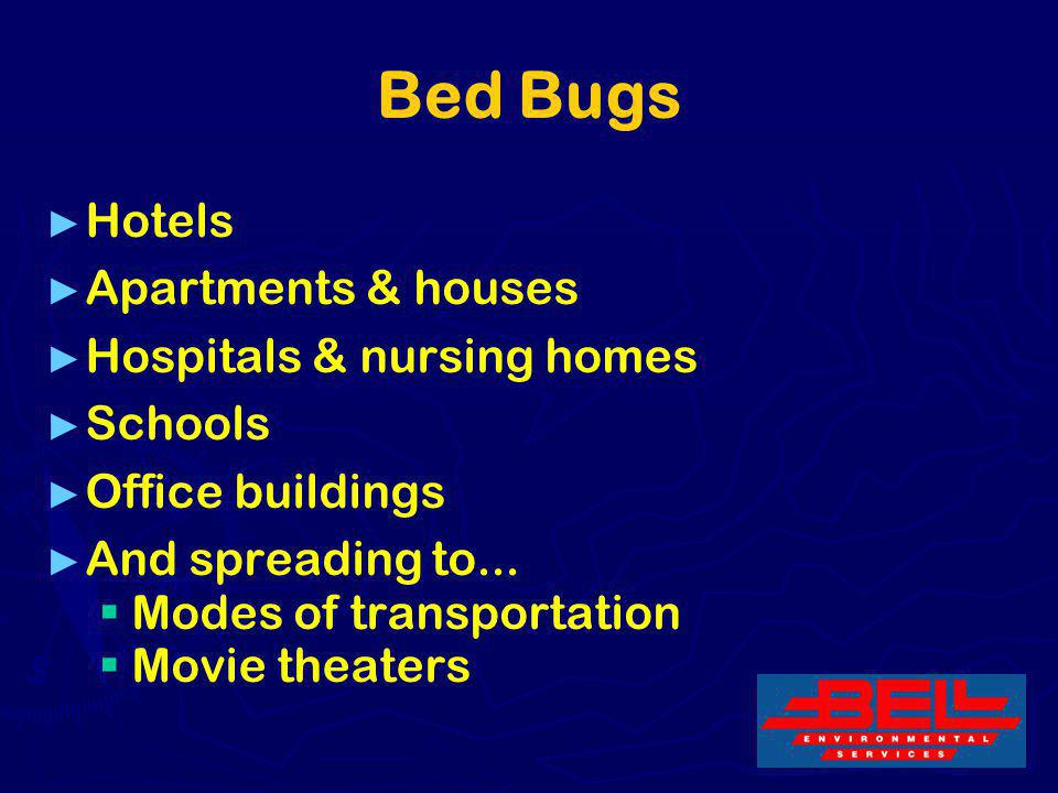 Bed Bugs Hotels Apartments & houses Hospitals & nursing homes Schools