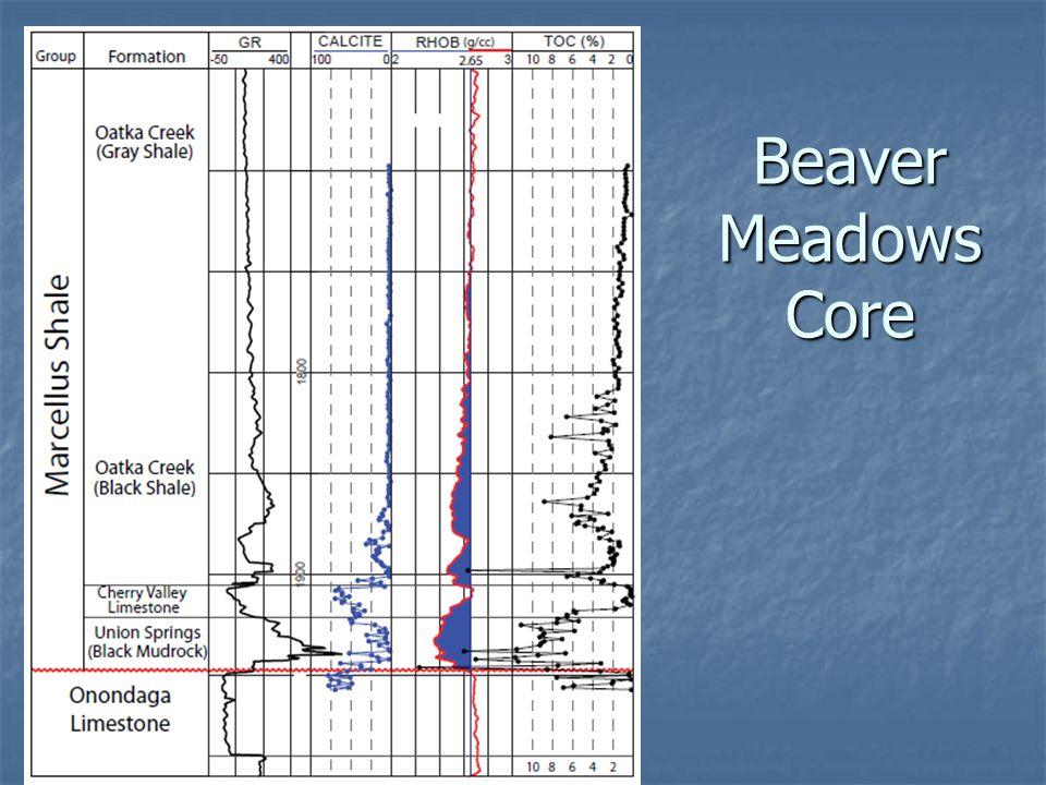 Beaver Meadows Core