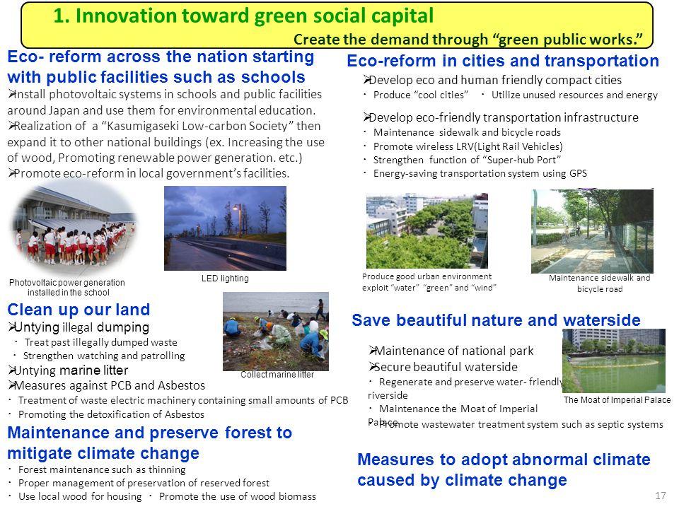 1. Innovation toward green social capital