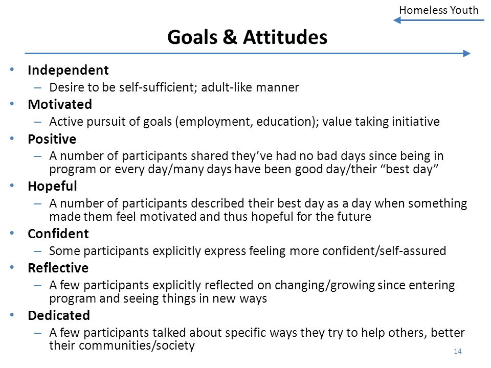 Goals & Attitudes Independent Motivated Positive Hopeful Confident
