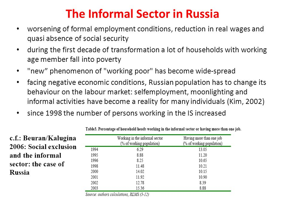 The Informal Sector in Russia