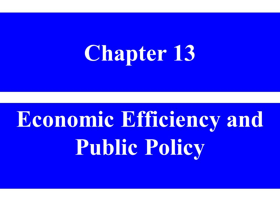 Economic Efficiency and Public Policy