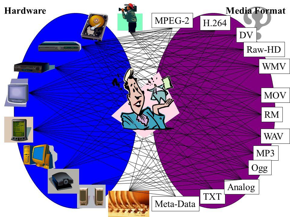 Hardware Media Format MPEG-2 H.264 DV Raw-HD WMV MOV RM WAV MP3 Ogg