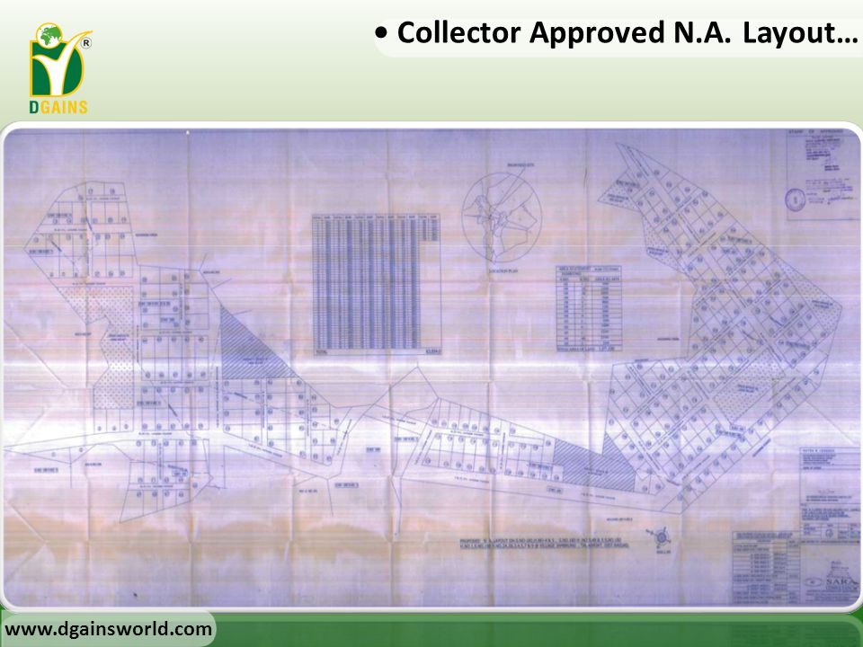 • Collector Approved N.A. Layout…