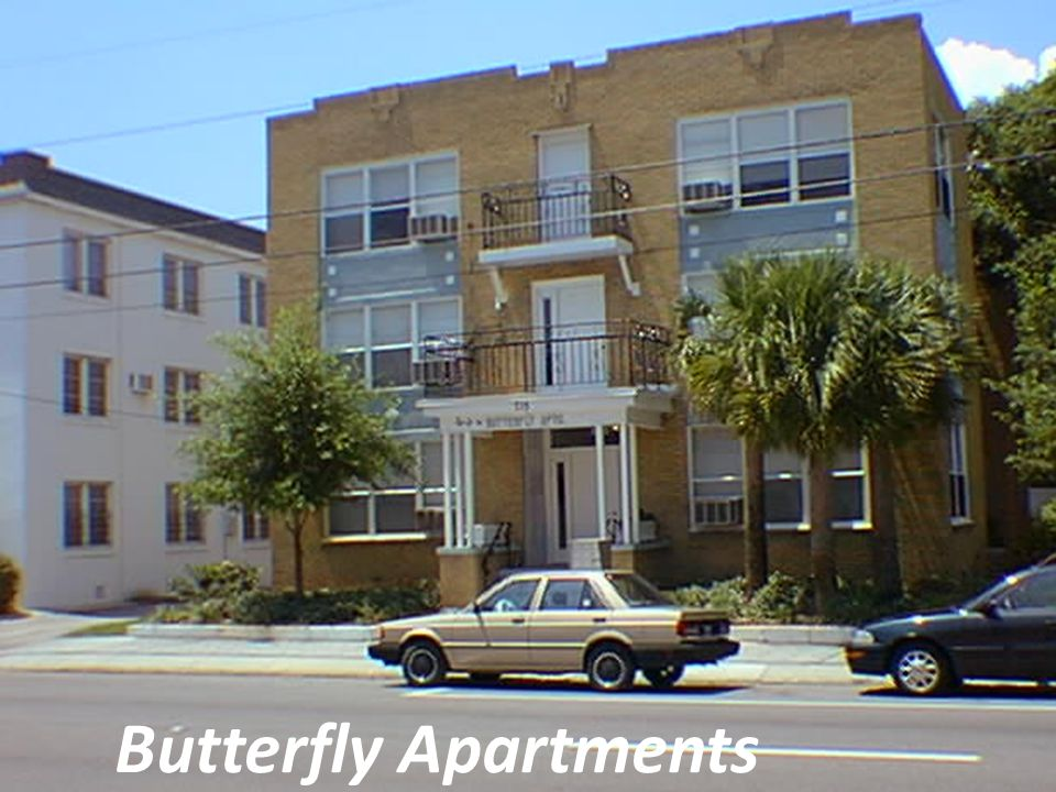 Butterfly Apartments