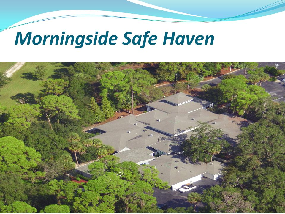 Morningside Safe Haven