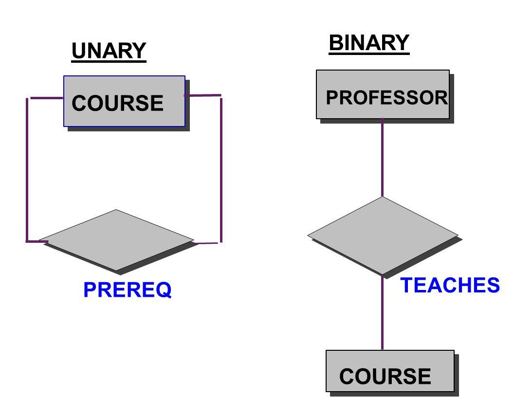 BINARY UNARY PROFESSOR COURSE TEACHES PREREQ COURSE