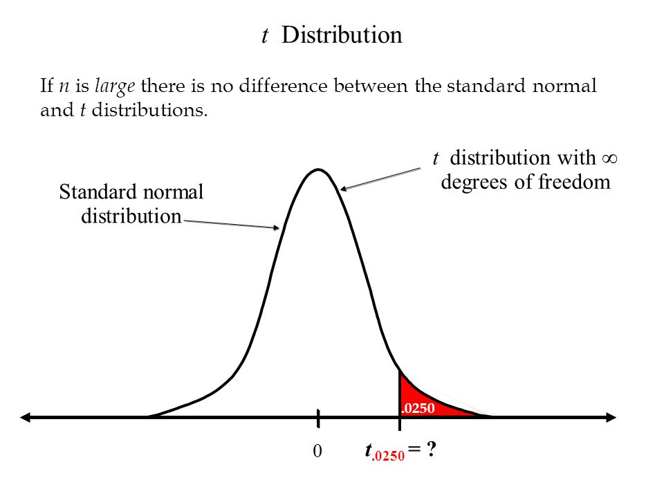 t distribution with ∞ degrees of freedom