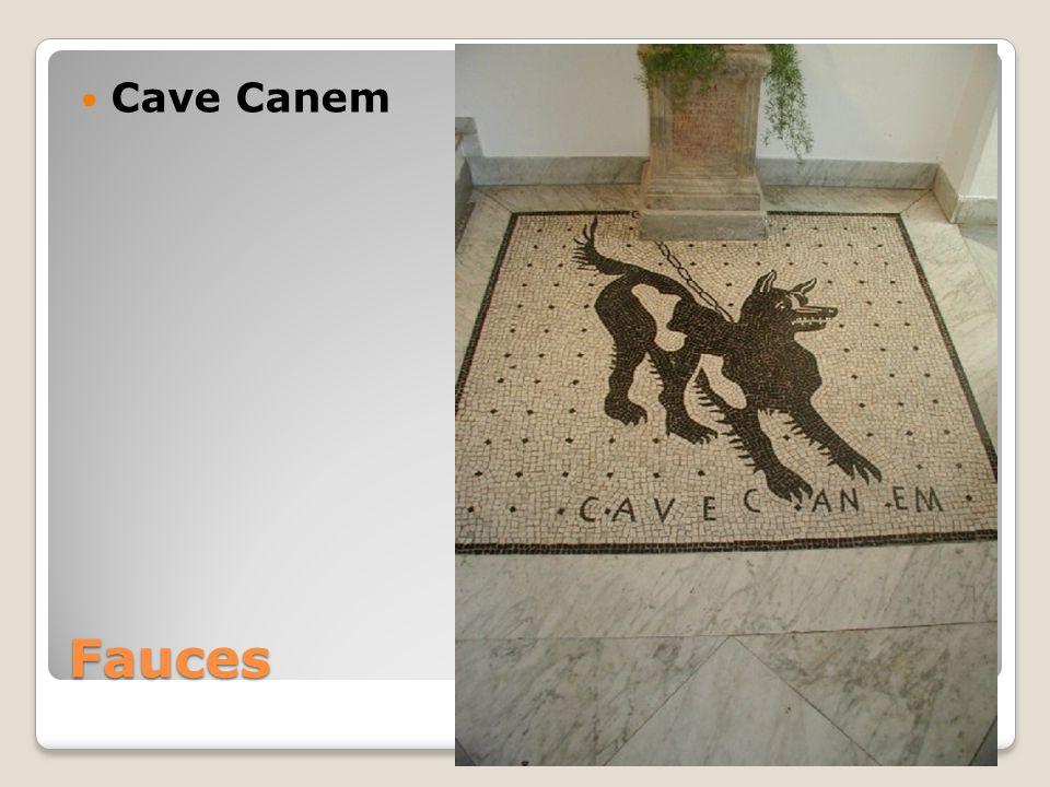 Cave Canem Fauces