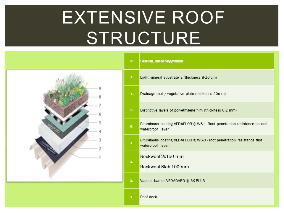 Extensive roof structure