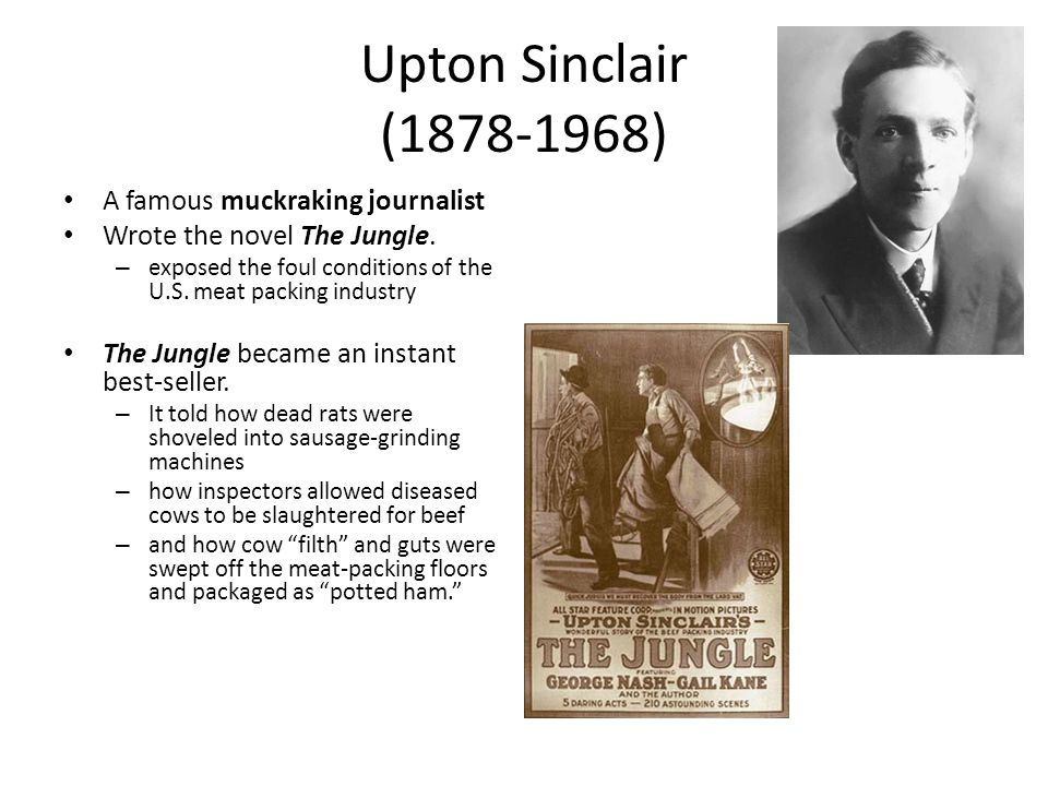 Upton Sinclair (1878-1968) A famous muckraking journalist