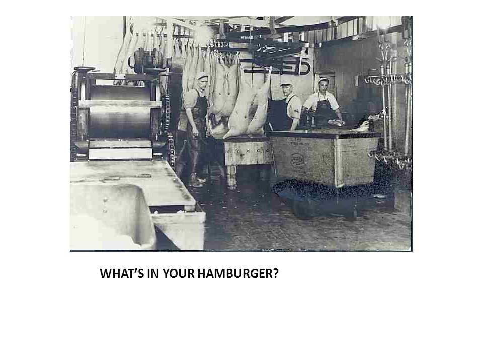 WHAT'S IN YOUR HAMBURGER