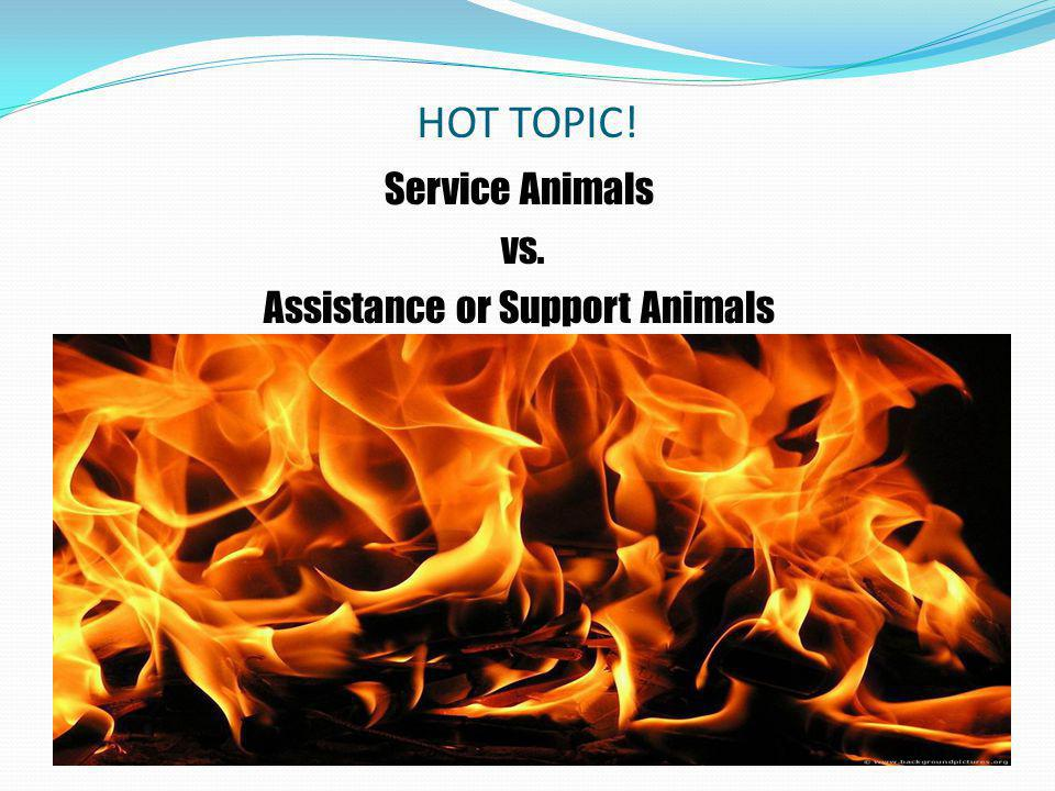 Assistance or Support Animals