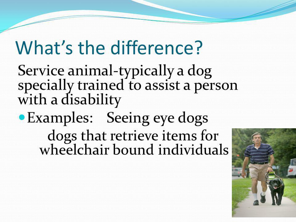 What's the difference Service animal-typically a dog specially trained to assist a person with a disability.
