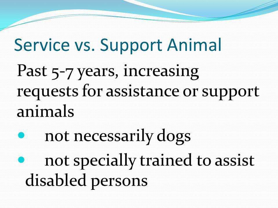 Service vs. Support Animal