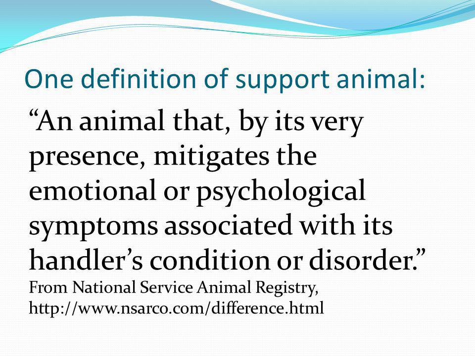 One definition of support animal: