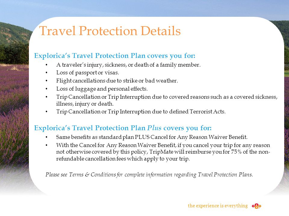 Travel Protection Details