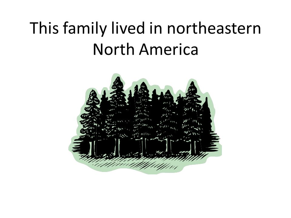 This family lived in northeastern North America