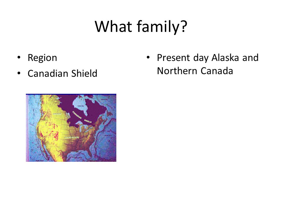 What family Region Canadian Shield