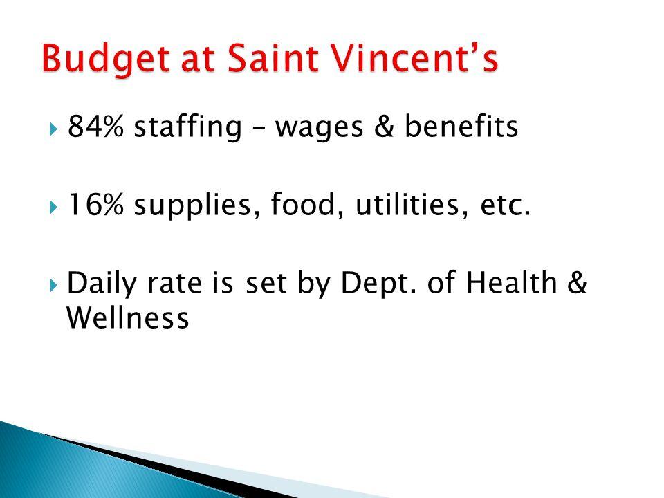 Budget at Saint Vincent's