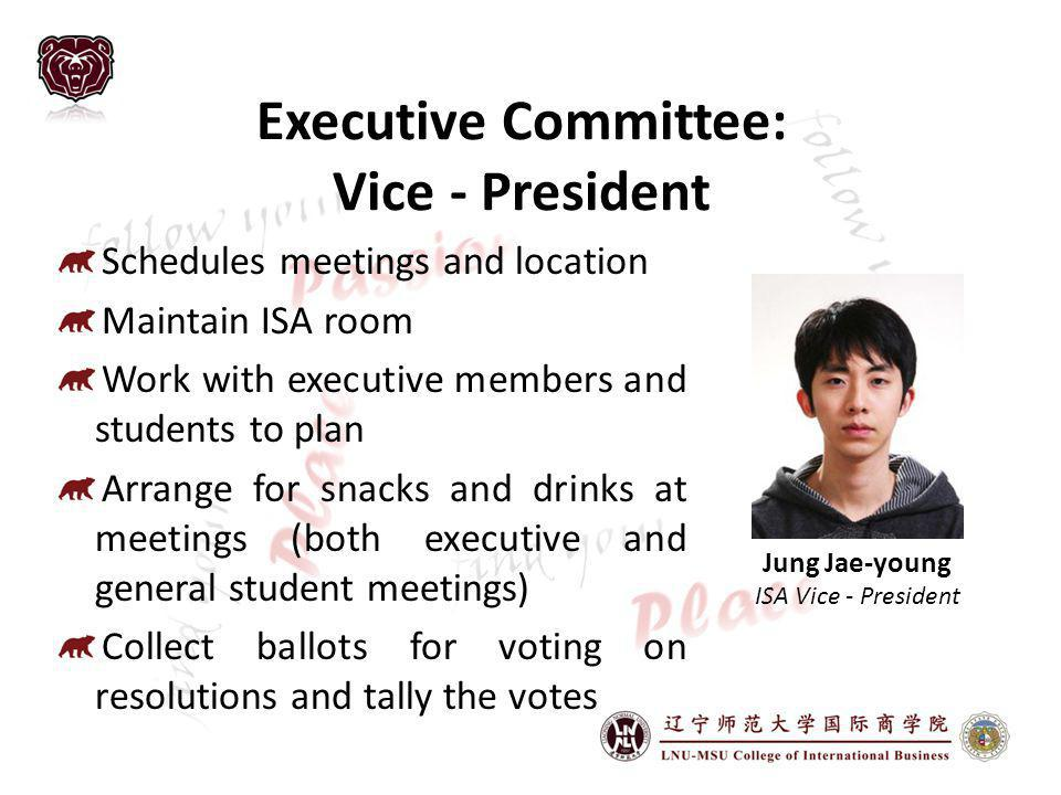 Executive Committee: Vice - President
