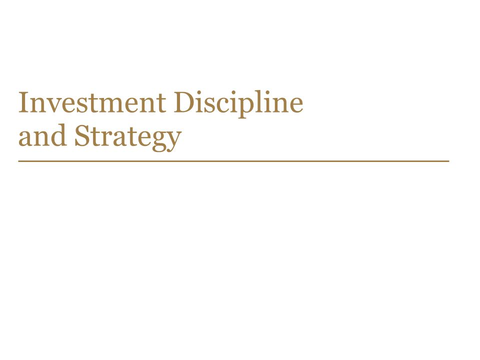 Investment Discipline and Strategy