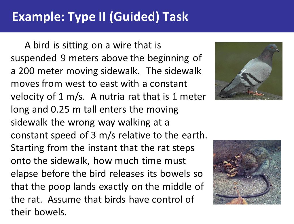 Example: Type II (Guided) Task