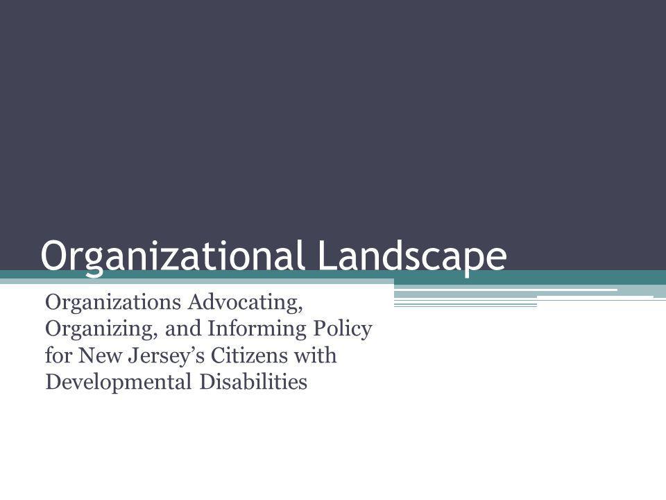 Organizational Landscape