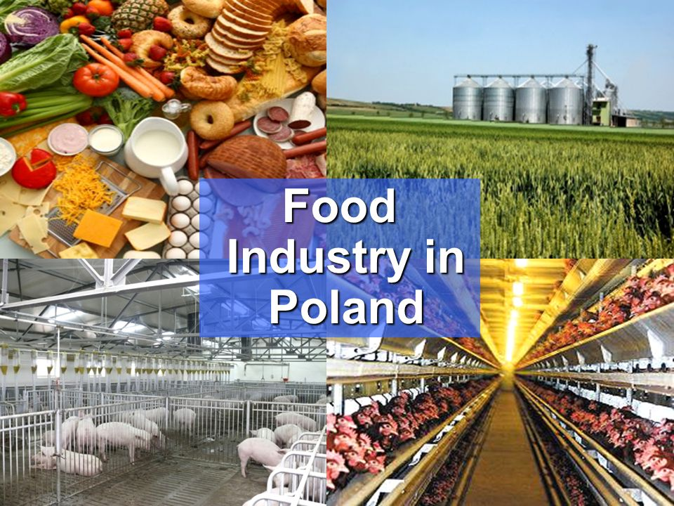 Food Industry in Poland