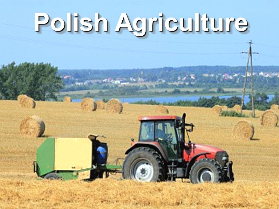 Polish Agriculture
