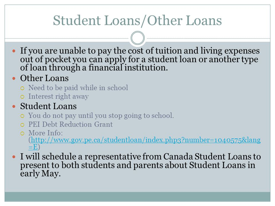 Student Loans/Other Loans