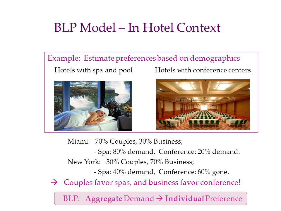 BLP Model – In Hotel Context