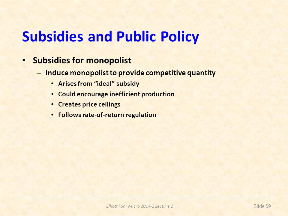Subsidies and Public Policy