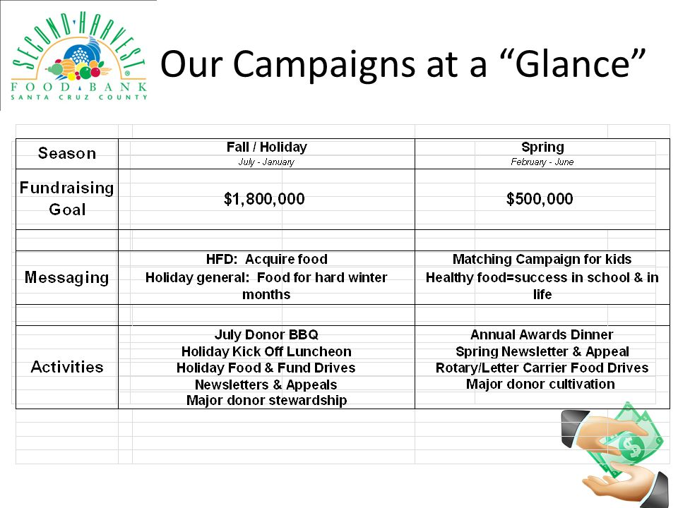 Our Campaigns at a Glance
