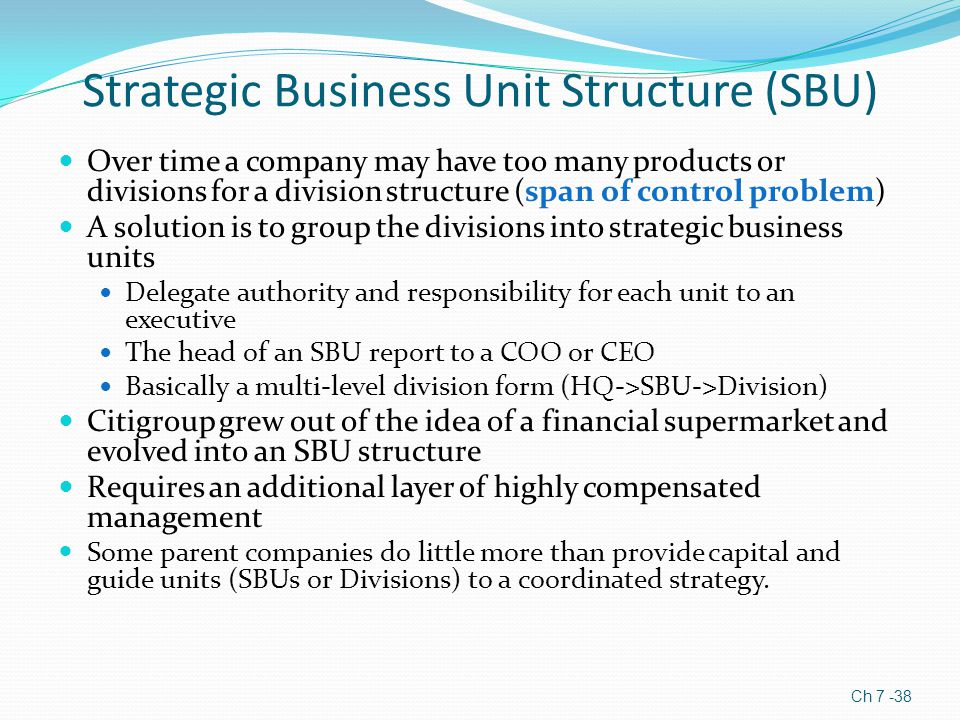 Strategic Business Unit Structure (SBU)