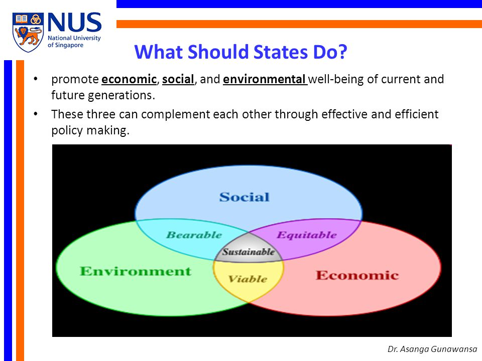What Should States Do promote economic, social, and environmental well-being of current and future generations.