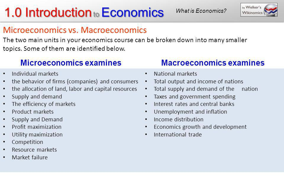 Microeconomics examines Macroeconomics examines