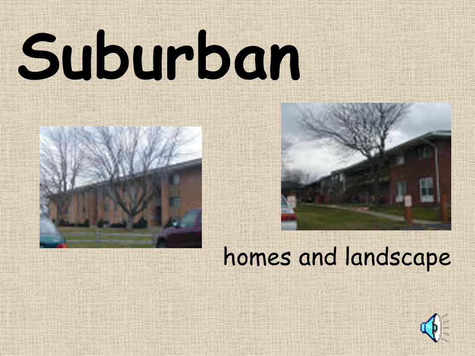 Suburban homes and landscape