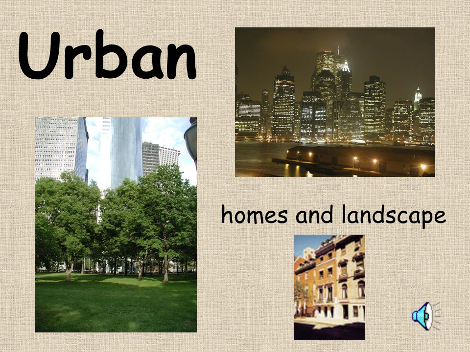 Urban homes and landscape