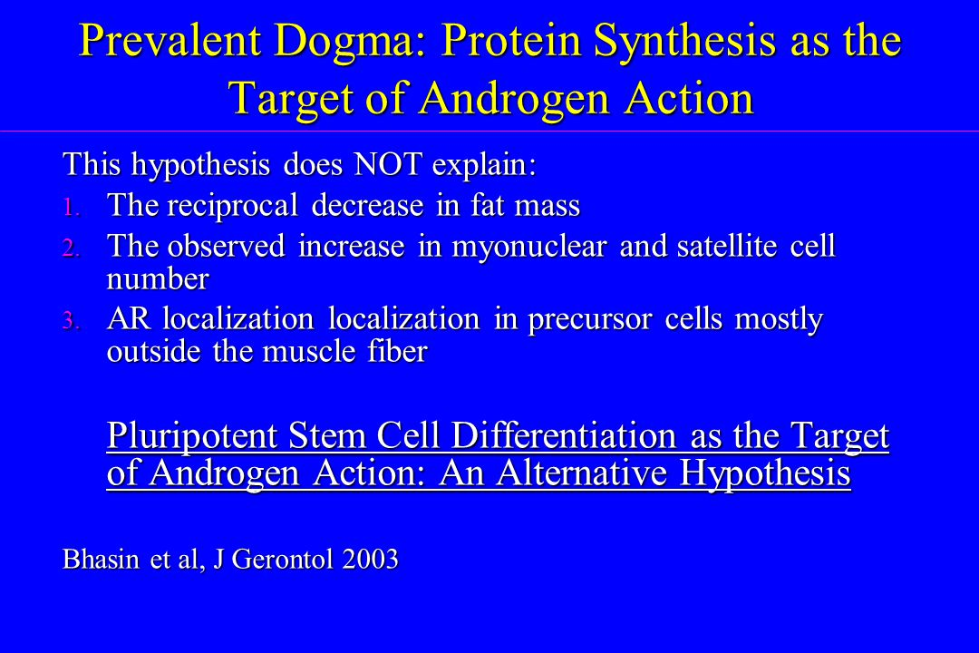 Prevalent Dogma: Protein Synthesis as the Target of Androgen Action
