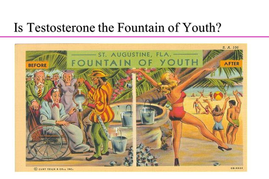 Is Testosterone the Fountain of Youth