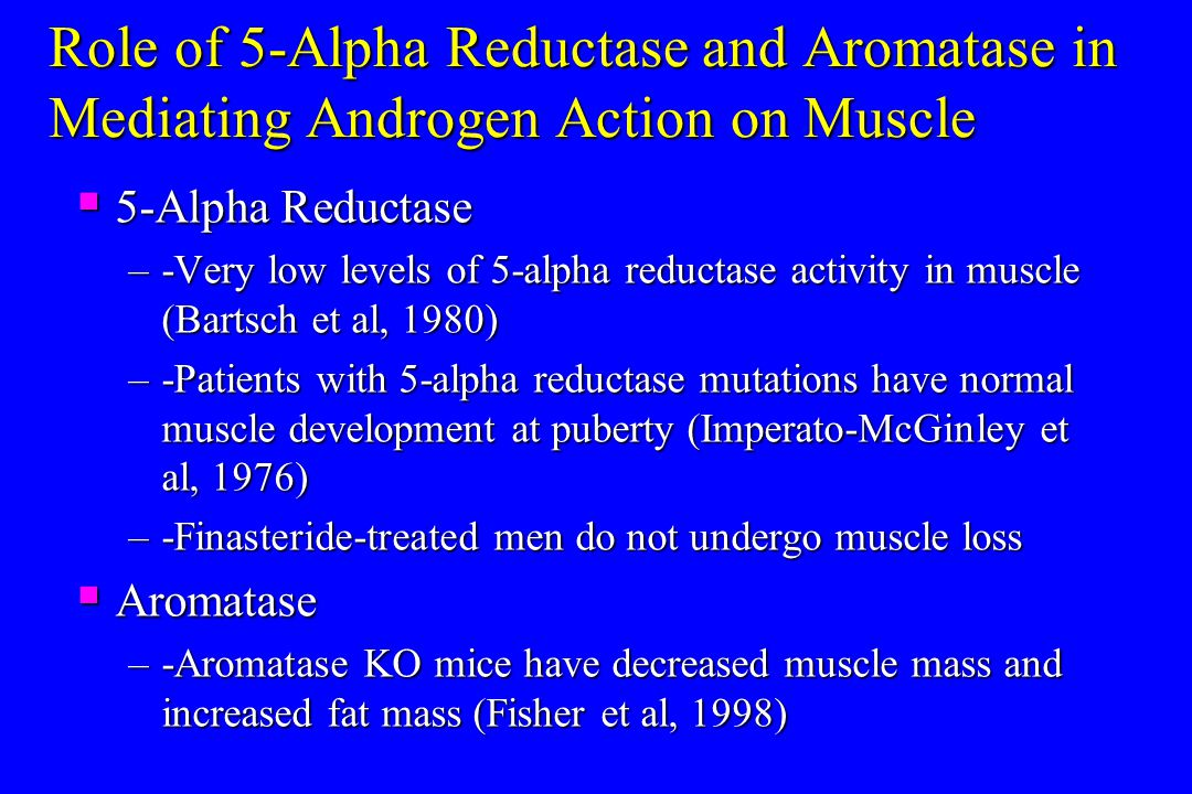Role of 5-Alpha Reductase and Aromatase in Mediating Androgen Action on Muscle