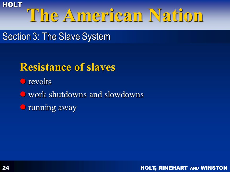 Resistance of slaves Section 3: The Slave System revolts