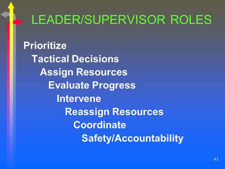 LEADER/SUPERVISOR ROLES