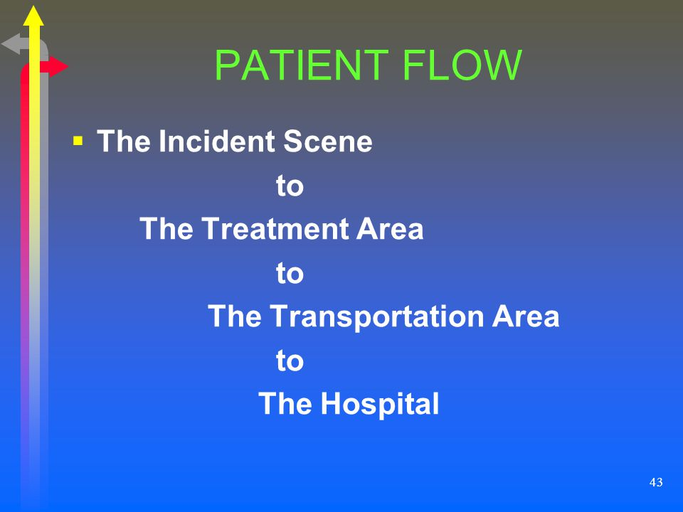 PATIENT FLOW The Incident Scene to The Treatment Area