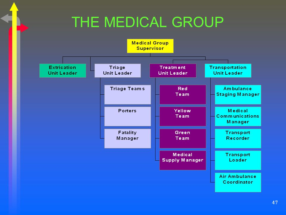 THE MEDICAL GROUP