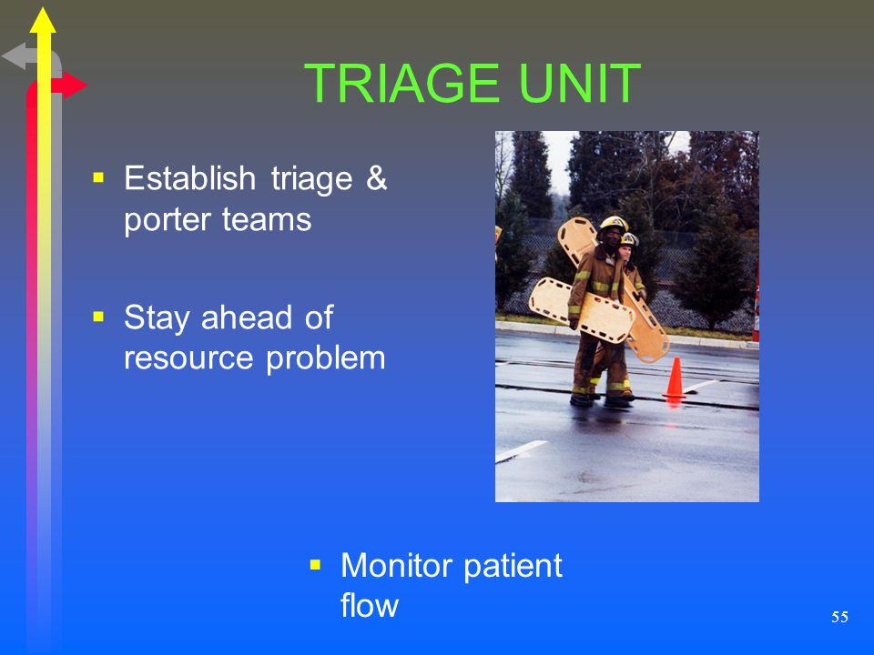 TRIAGE UNIT Establish triage & porter teams