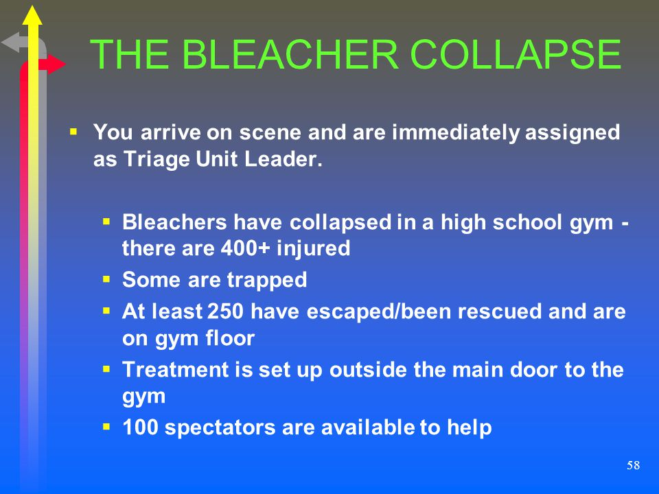 THE BLEACHER COLLAPSE You arrive on scene and are immediately assigned as Triage Unit Leader.