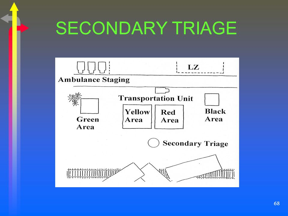 SECONDARY TRIAGE