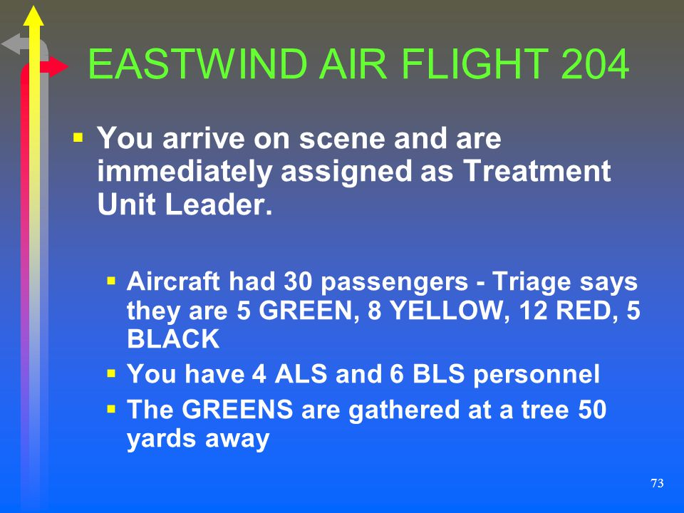 EASTWIND AIR FLIGHT 204 You arrive on scene and are immediately assigned as Treatment Unit Leader.